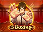 5 Boxing