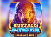 Buffalo Power